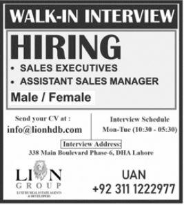 Lion Group Walk In Interviews 2021